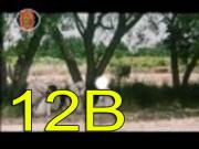 Ye NEBIYULAH YUSIF (A.S) FILM BE AMARGNA part 12 b